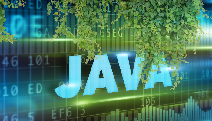 Java – The Oregano in your Mainframe Garden – BMC Blogs