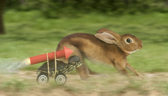 IT and the End User: The Tortoise and the Hare of Business Applications