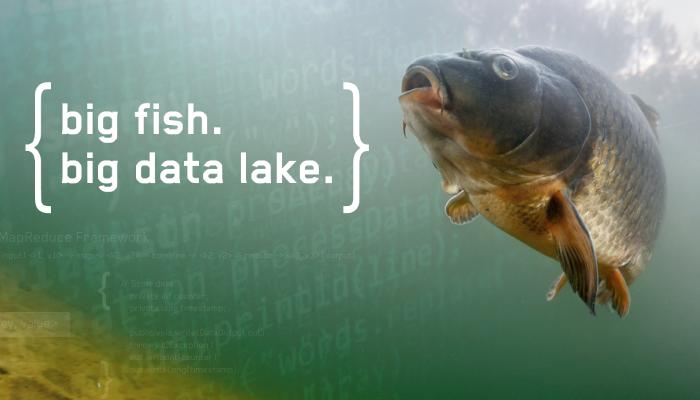 Data Lake vs  Data Warehouse vs  Database: What's The